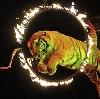 Цирки в Нефтегорске